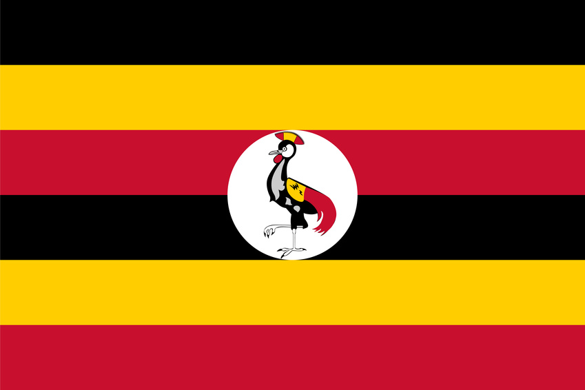 Standard Proportions for Uganda Flag